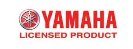licensors-logo-y1